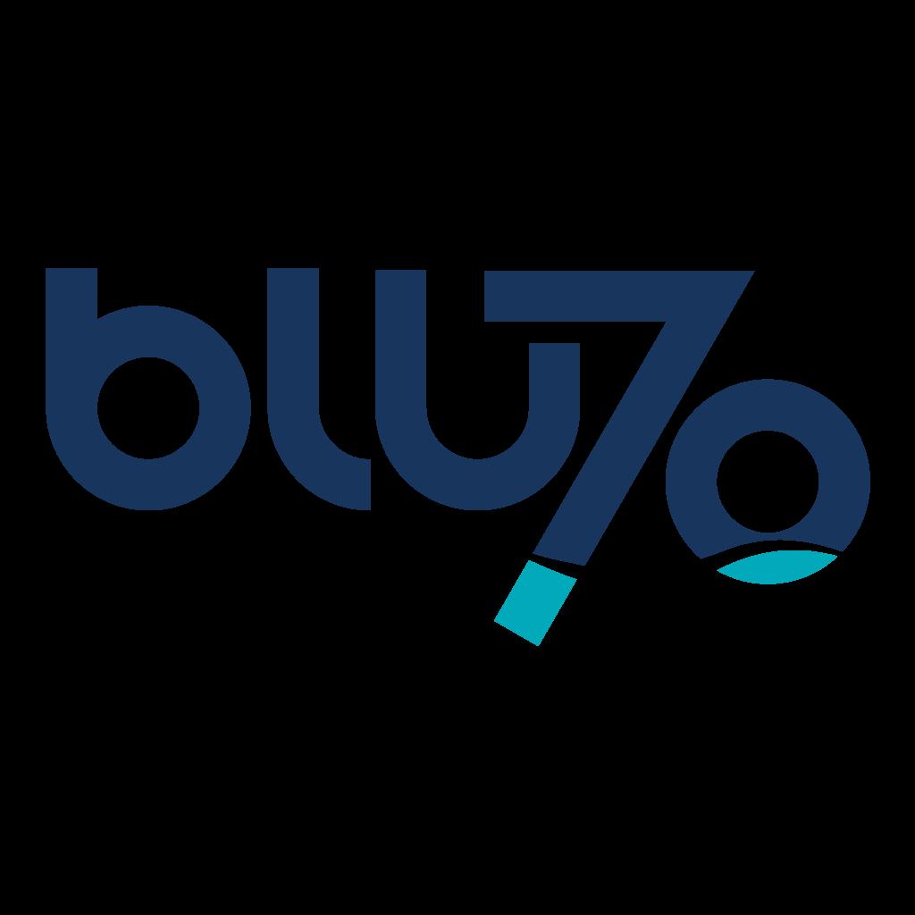 logo Blusettanta